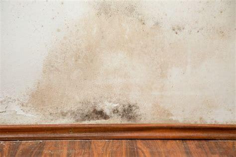 muffa nel materasso rimedi naturali muffa muri non sprecare