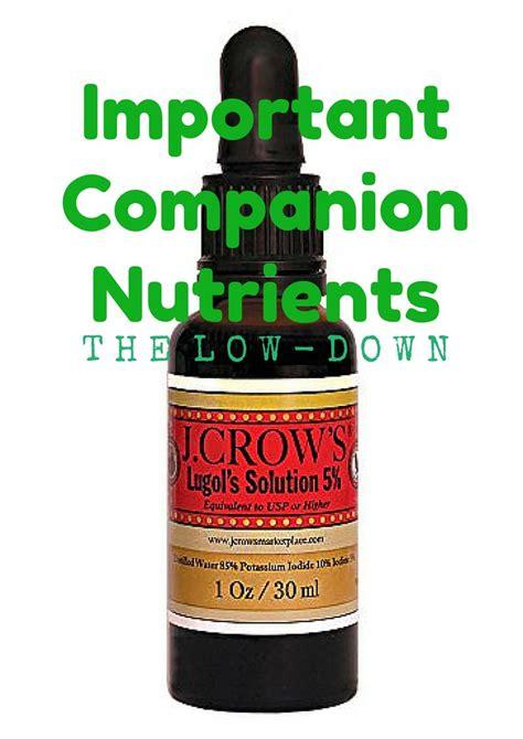 Iodine Detox Protocol by Best 25 Celtic Salt Ideas On Benefits Of