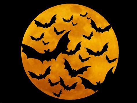 halloween symbols release the bats america s most haunted