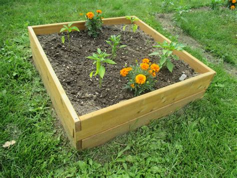 vegetable beds raised garden bed kit 3 x3
