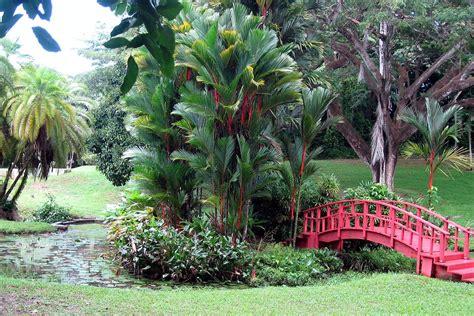 Botanical Garden Flowers San Juan Botanical Garden