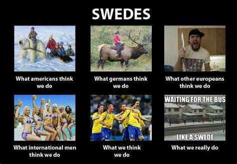 Swedish Meme - swedes what people think i do vs what i really do pinterest sweden humor and funny stuff