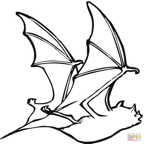 coloring pages with bats bat 18 coloring page free printable coloring pages