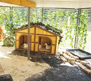 Backyard Ducks Housing Pet Duck House Plans Duck Home Plans Ideas Picture