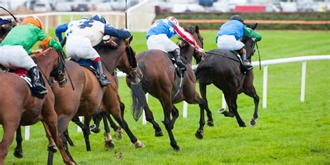 sea  sun leads betbrights quest  tipster challenge