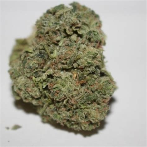 reclining buddha strain big skunk korean marijuana strain reviews allbud
