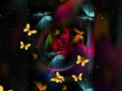imagenes hermosas y sentimentales imagenes de mariposas bonitas youtube