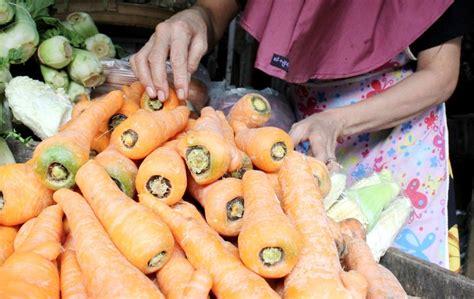 Benih Wortel Lokal wortel impor tidak lagi beredar di nganjuk
