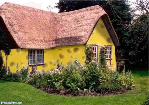 Cottage Link by Cottage Cheese Pictures Freaking News