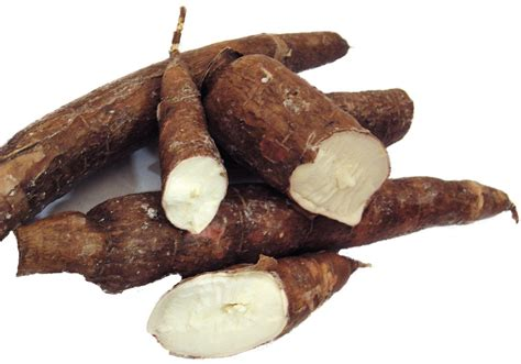 yucca carbohydrates health benefits of cassava walker in the kitchen