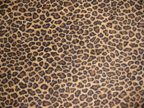 real leopard print pattern www pixshark com images
