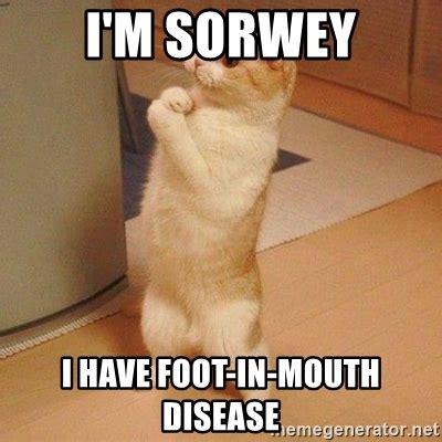 Foot Meme - i m sorwey i have foot in mouth disease sorry cat meme