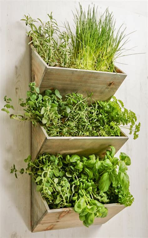 shabby chic large wall mountable herb planter kit