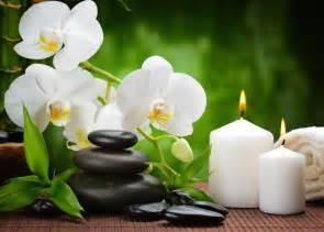 White Lotus Feng Shui Siria Grandet Feng Shui M 233 Xico 191 Qu 233 Es El Feng Shui Cl 225 Sico