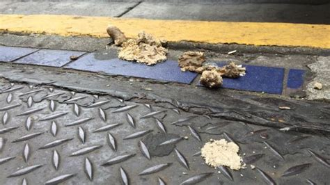 san francisco excrement map the streets of san francisco are covered in human