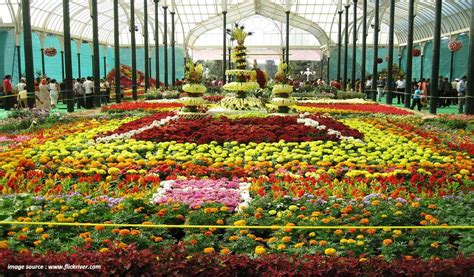 indian garden flowers flower garden in india flower show festival india