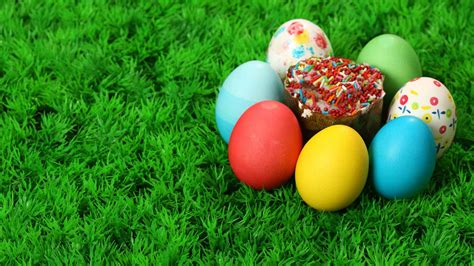 colorful eggs colorful eggs and sprinkled cupcake in grass hd wallpaper