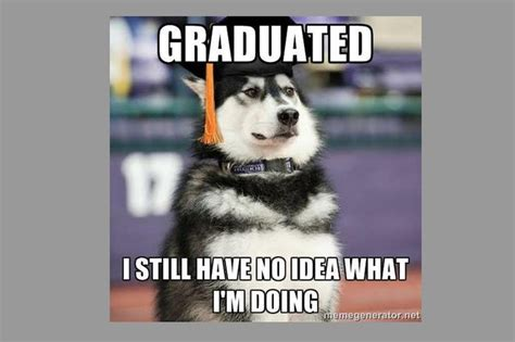 animal memes  college students   cutenesscom