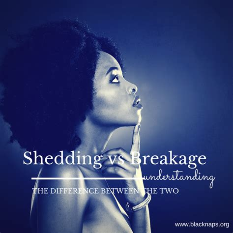 understanding the difference between shedding and breakage