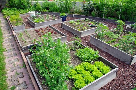 vasi per orto sul terrazzo orto sul terrazzo consigli pratici tabbid