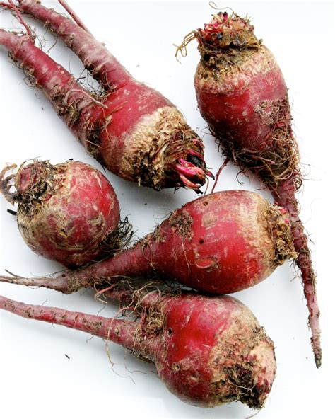 colored root vegetable the overlooked and their health benefits root