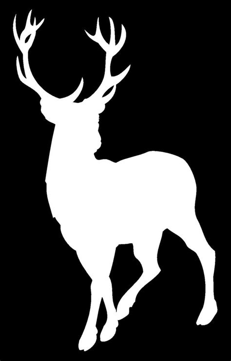 white silhouette deer silhouette fishing rack horns whitetail truck