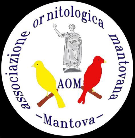 associazione mantovana allevatori associazioneornitologicamantovana aommantovas jimdopage