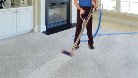 diy couch cleaning slinky life business lifestyle slinky com au