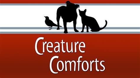 creative comforts mpb mississippi public broadcasting