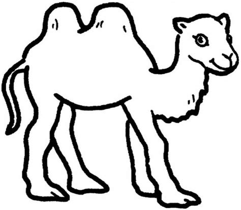 The Desert Ship 12 Easy Camel Coloring Pages For Kids Camel Coloring Page