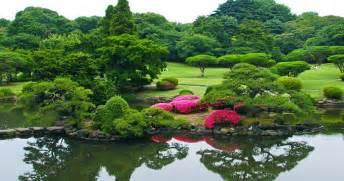 beautiful shinjuku gyoen national garden