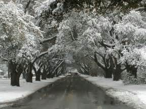 snow in south boyd and silva martin young horse mid winter update from