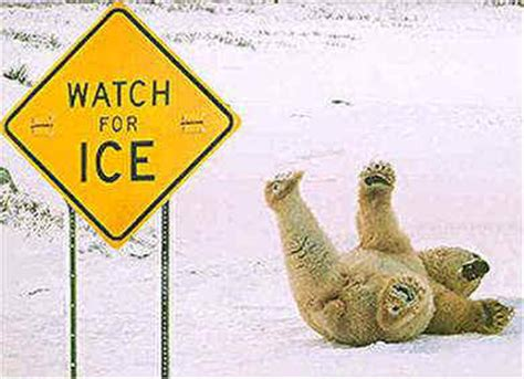 funny facebook status about hot weather freezing cold funny sayings www proteckmachinery