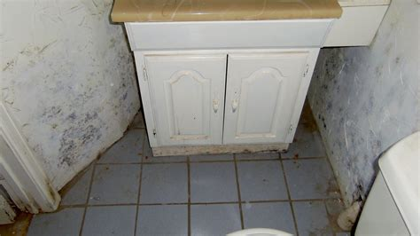 bathroom mold treatment bathroom mold treatment 28 images avoiding costly home