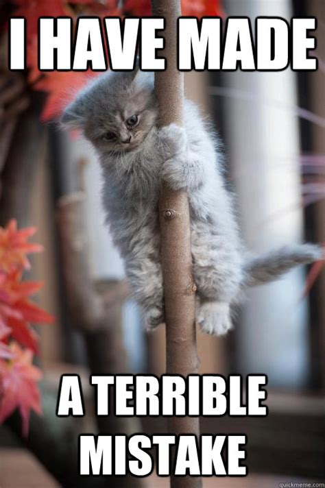 Terrible Memes - i have made a terrible mistake sudden realization kitten