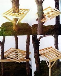 Construire Une Cabane Dans Les Arbres Le Guide M&233thodes