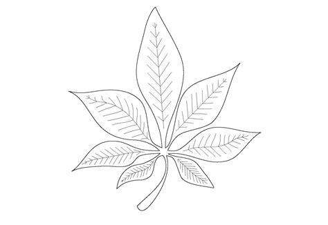 leaf coloring pages for preschool leaf coloring pages for preschool activity shelter
