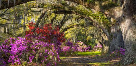 Wilmington Nc Botanical Gardens Airlie Gardens Wilmington Nc Park Profiles Wilmingtonnc