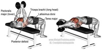Diy Incline Bench Dumbbell Pullover An Isolation And Push Exercise Target