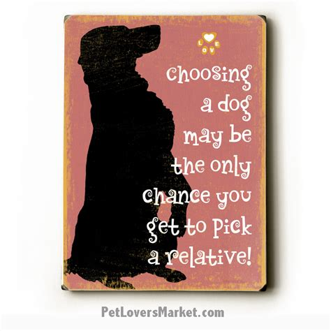 choosing a puppy lover gifts cat lover gifts breeds picture