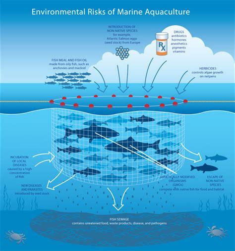 ecological design adalah aquaculture fr beachapedia