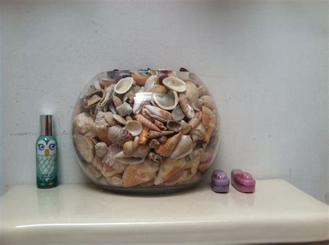 seashell decor for bathroom seashells