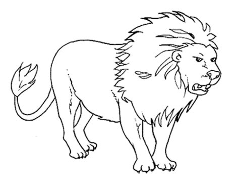 coloring pages animals hibernating free coloring pages of hibernate animals