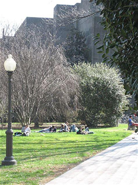 bench tree georgetown michael evan jurist tributes footprints