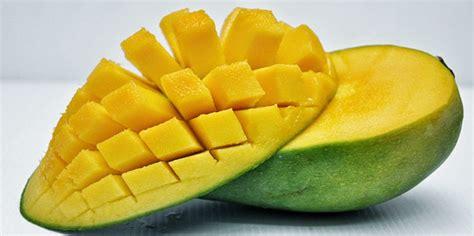gambar proses membuat jus mangga 10 khasiat dan kelebihan buah mangga tips panduan blog s