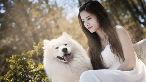 wallpaper girl dog hot girl with white puppy nice picture new hd