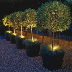 Backyard Solar Lighting Ideas 432 Best Images About Outdoor Lighting Ideas On Lighting Design Pathways And Patio