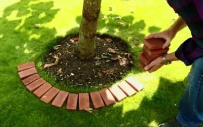 garden edging feature   tree  tiles