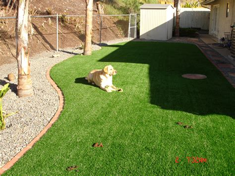 do dogs need grass backyard residences artificial grass synthetic grass for childcare