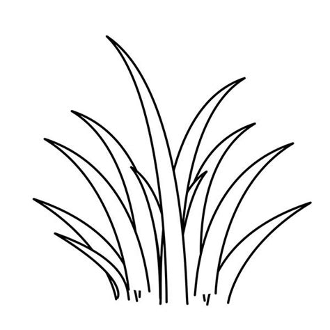 Grass Coloring Page grass drawing clipart best